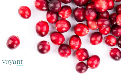 Ingredient Insight – Cranberry
